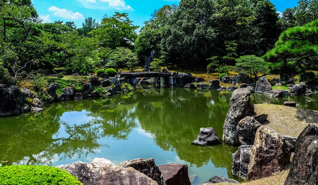 Lago ornamental – Uma fonte de vida no seu jardim!