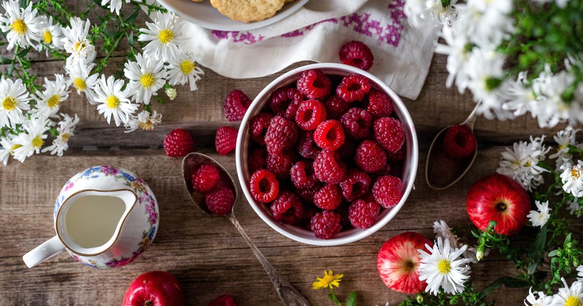 Frutos dos jardins de Verão - amoras