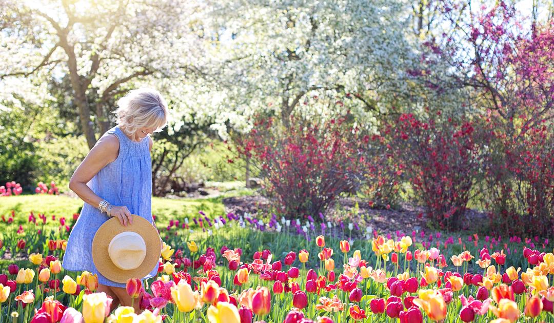 A importância de planear o seu jardim de Verão