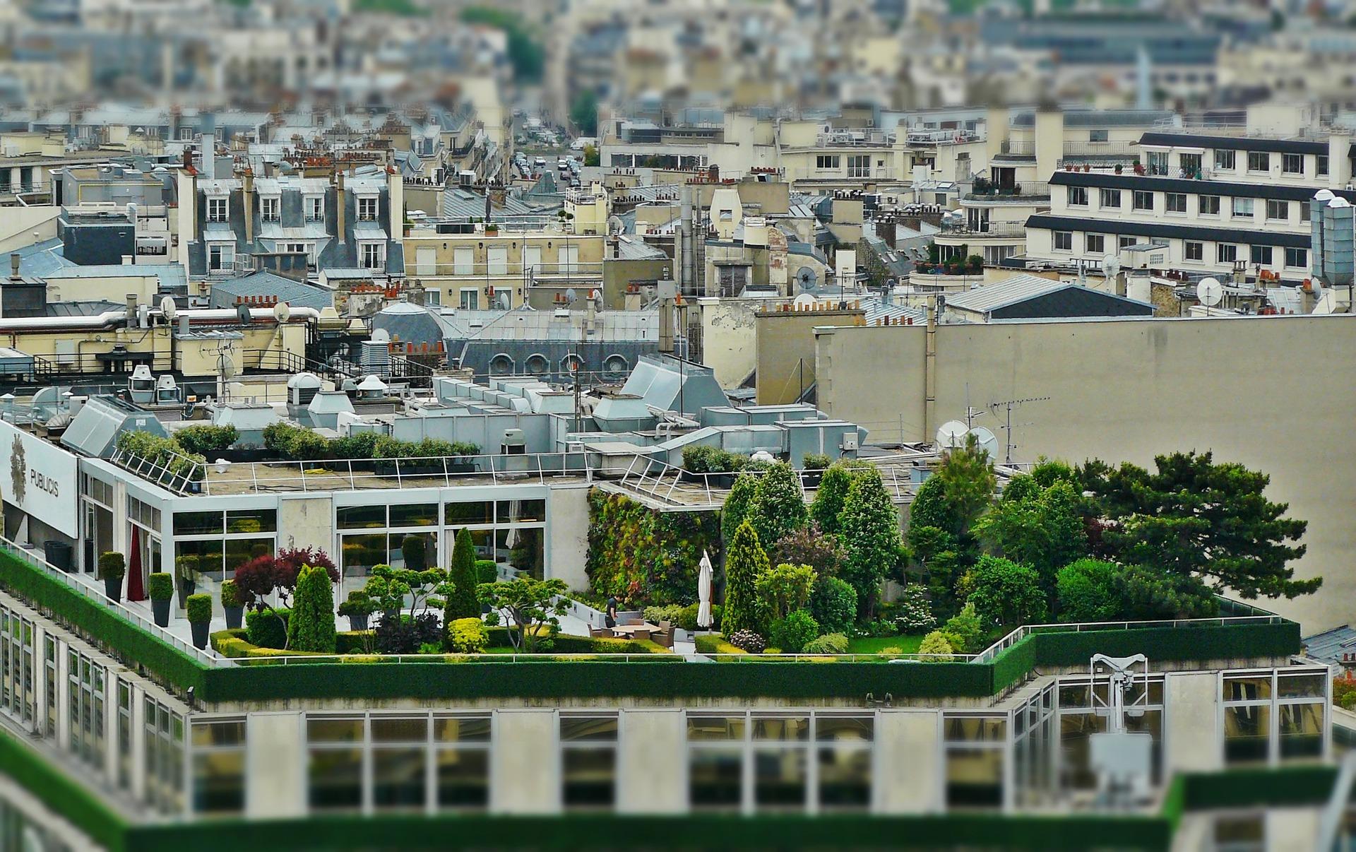 Jardim rooftop