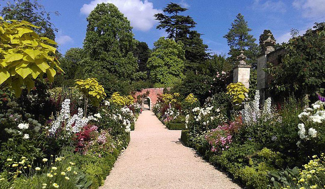 Quem é a pessoa ideal para criar um jardim? O arquiteto paisagista