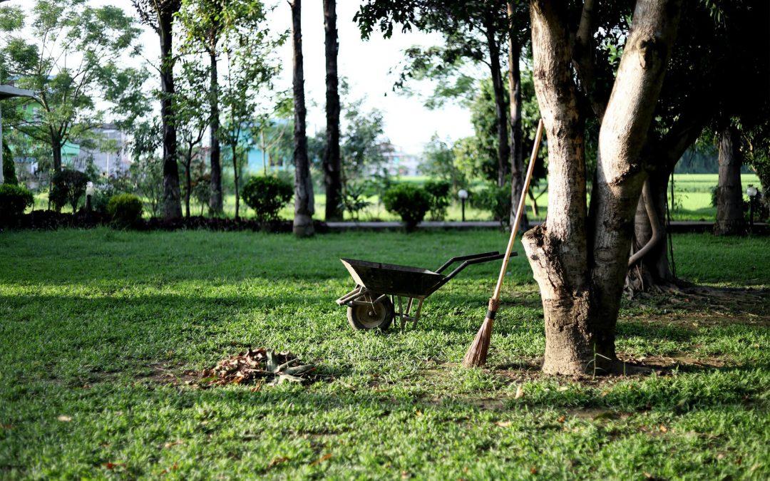 O seu jardim – um parceiro em qualquer altura